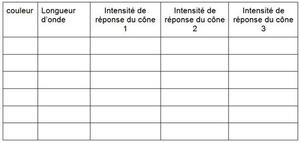 Ophtalmologiste, document 1