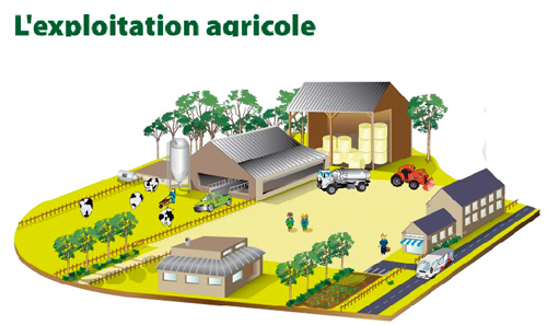 business plan exploitant agricole