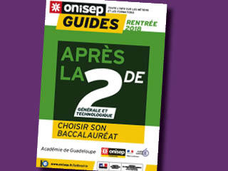 Guide seconde carroussel
