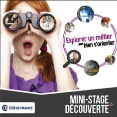 Mini stage de d couverte professionnelle onisep for Chambre de commerce creteil