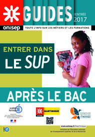 Couverture guide bac 2017