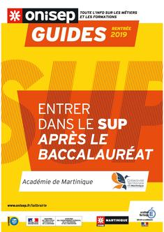 Couverture guide bac 972 2019